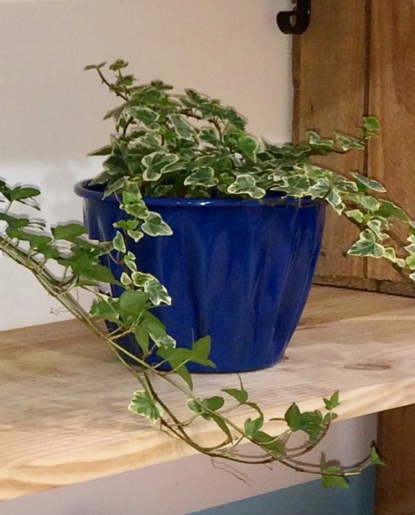Pot à fleurs émaillé du Guatemala, bleu océan, nature morte