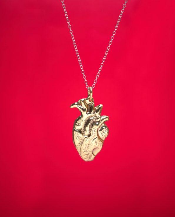 Pendentif coeur anatomique - Or